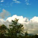 Beautiful Sky by terrebo