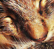 Sleeping tabby by Elena Kolotusha