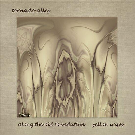 Tornado Alley by Billie  Dee