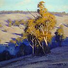 Afternoon Shadows Turon Hills nsw Australia by Graham Gercken