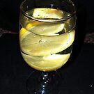 Still Life Lemon  by Rick  Todaro