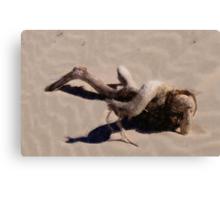Nude on the Beach Canvas Print