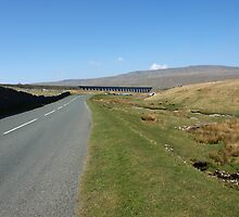 Ribblehead by waldie
