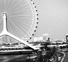 Ferris Wheel  by Danit Elgev