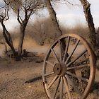 Wagon Wheel by John Fleming