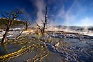 Mammoth Hot Springs - Catching Rays by Stephen Beattie