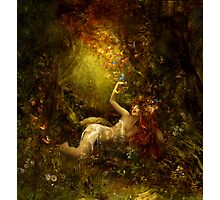 Summer magic Photographic Print