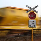 STOP! Look for Trains by Pene Stevens