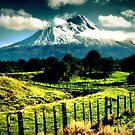 Mt Taranaki by Mike Rowley