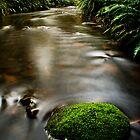 Serenity by Raquel O'Neill