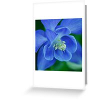 So Blue Greeting Card