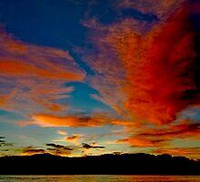 Last light by Warren. A. Williams