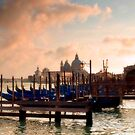 Venice Waterfront by Stephen Knowles