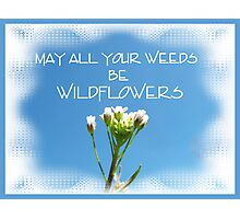 May all your weeds be Wildflowers Photographic Print