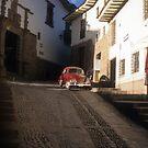 Cusco Beetle #1 by Alexh