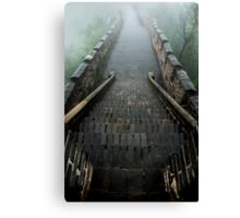 the 25 steps Canvas Print