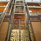 Bradbury Building Elevator by photosbyflood