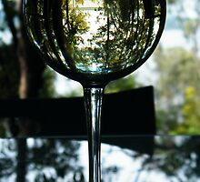 Lake Weyba (Noosa) Champagne Reflections  by mandyemblow