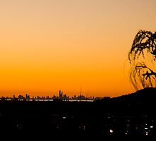 the Gold Coast by shaun965