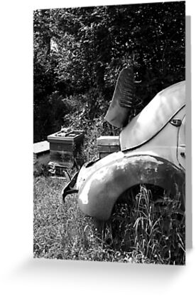 Renault 4 CV - Dauphine - Bee Hive by AbsintheFairy