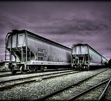 Rail Cars by Jigsawman