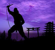 Ninja Attack by Okeesworld