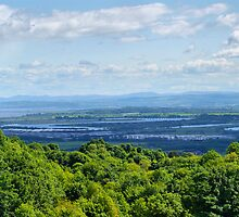 The River Forth  by Alan Findlater
