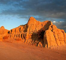 Magic Mungo. by trevorb
