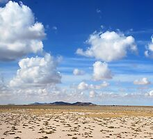 Bolivian Landscape by Alessandro Pinto
