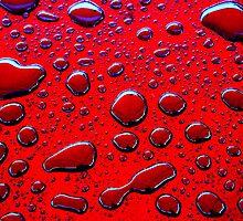 Wet by James Coard