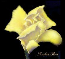 'Sunshine' Rose Digital Painting, Baroque Roses by luvapples downunder/ Norval Arbogast