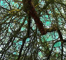 Fauvist Composition: Lacy Branches Cascading Downward #1 by Ivana Redwine
