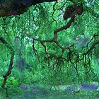 Branches Cascading Downward Gone Fauve #2 by Ivana Redwine