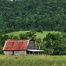 Farmer's Version of the Red Roof Inn by © Bob Hall