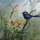 Splendid Blue Fairywren by Vickyh