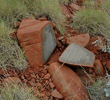 Rocks and spinifex by Richard  Stanley
