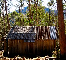 Trappers Hut - Walls of Jerusalem National Park by Marilyn Harris
