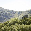 Dolbadarn castle. by ccrcats