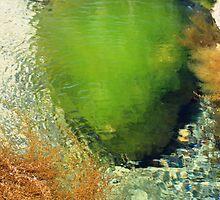 Sea Shrubs by Saraina Lewis