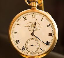 Tempus fugit - (Time flies) by woolleyfir