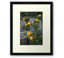 Renegade Roses Framed Print
