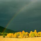September Light by Rob Pitzer by Rob Pitzer
