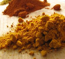 Spices by Caroline Fournier