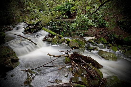 Strickland Falls, Hobart by Kelly McGill