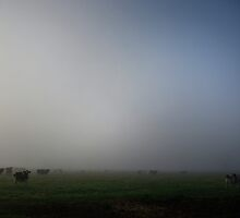 Friesian Fog by Norman Repacholi
