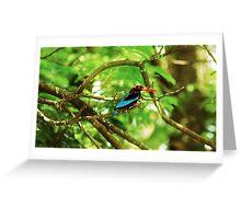 White throated Kingfisher #1 Greeting Card