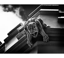 Gargoyle! Photographic Print