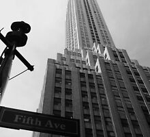 Fifth Avenue by cornishgirlie