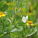 Happy Birthday, Grandma by Peri