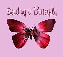 Sending a Butterfly by Peri